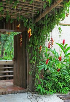 Landschaftsbau von Rud Kunst Backyard garden tropical patio 39 ideas The Truth Abo Tropical Patio, Tropical Garden Design, Tropical Landscaping, Tropical Plants, Tropical Gardens, Balinese Garden, Bali Garden, Dream Garden, Pergola Patio