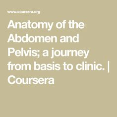 Anatomy of the Abdomen and Pelvis; a journey from basis to clinic. | Coursera Leiden University, 3d Anatomy, Food For Digestion, Medical Center, Clinic, Knowledge, Journey, Learning, Studying