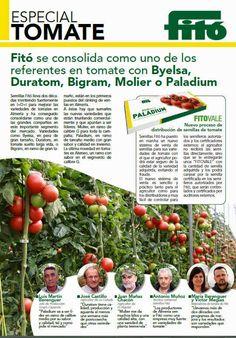 THM - Tecnologías de la Horticultura Mediterránea: Boletines informativos de Fitó sobre tomates y pim...