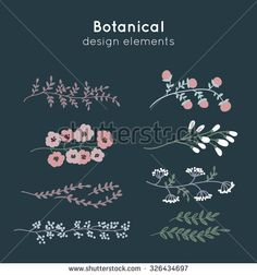 Hand drawn decorative vector botanical borders for frames, postcards and design. Laurels, borders, ornaments.