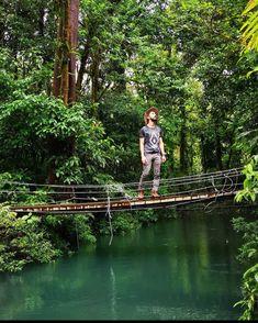 From those magical bridges of Tenorio Volcano National Park via@tico.viajero #CostaRicaExperts#CostaRica#puravida#travelcostarica#crfanphotos#costaricaphoto#costaricagram#costaricapuravida Volcano National Park, National Parks, Costa Rica Travel, Vacation Trips, Bridges, Pura Vida