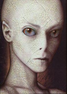 EXTRATERRESTRE ONLINE: Não Acredita em Nephilim? Você vai Após isto: fotos…