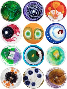 Klari Reis has an ongoing project called The Daily Dish 2013. Every day she posts pictures of her stunning hand-painted petri dishes which resemble live bacteria samples.