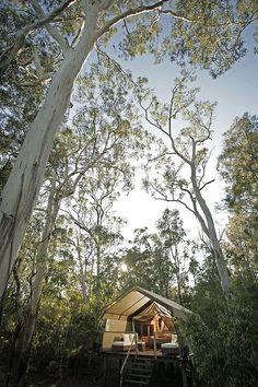 Paperbark Camp, Jervis Bay, Australia