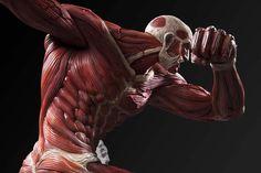 Attack on Titan UMCF Colossus Titan Figure by Fragment
