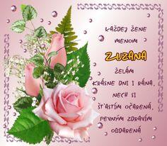 11.8 Zuzana