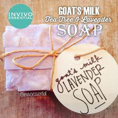 Adorable polka-dot tea tree and lavender essential oil soap DIY recipe #invivoessential