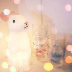 Mary Poppins: Why I love Dotcomgiftshop.... woodland rabbit night light