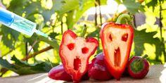 I 13 rischi emergenti nella catena alimentare in Europa: batteri, virus e…