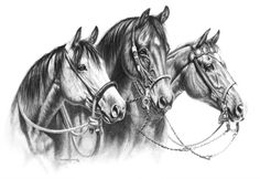 """Three Wise Men  10"""" x 14"""" image size  50 s/n Giclee on Paper  #horse #horses…"""