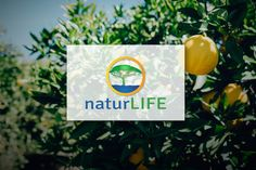 NaturLife - Logo Design by CongruentGraphics on Creative Market abstract,	botanical,	creative,	eco, farm,	fashion,	forest,	fresh,	garden, green,	hotel,	leaf,	leave,	life,	logo, modern,	natural,	nature,	organic,	2016 logo