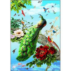 5d diy diamond painting cross stitch full square embroidery Mosaic Peacock diamond painting kits home Decoration rolled packing