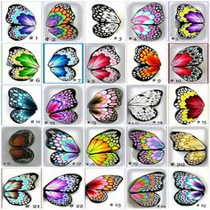 Butterfly wing patterns-not a written pattern just pictures of wings