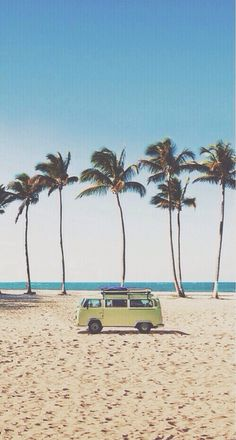palm trees blue skies vw bus summer wanderlust