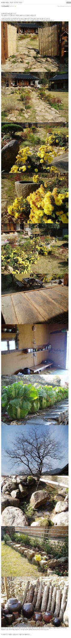[헌집도 개조하면 멋있다] 늦가을 시골집  [출처: http://cafe.naver.com/kimyoooo]