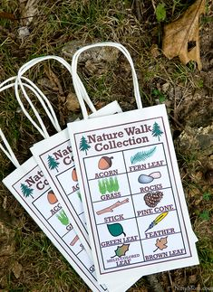 Going on a fall nature walk? Here's a printable Nature Walk Collection activity sheet to keep the kids engaged throughout the walk. Forest School Activities, Library Activities, Nature Activities, Autumn Activities, Preschool Activities, Printable Activities For Kids, Toddler Activities, Free Printables, Activity Sheets For Kids