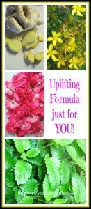 Uplifting Herb Formula ~ nervines to nourish and support http:www/studiobotanica.com