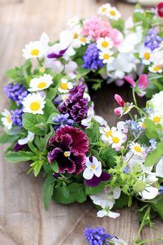 Meravigliosa primavera !!!