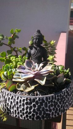 Potted Earth Succulents ~ Buddha bowl SOLD Flower Planters, Flower Pots, Planting Succulents, Planting Flowers, Indoor Zen Garden, Zen Home Decor, Front Garden Landscape, Buddha Garden, Buddha Decor
