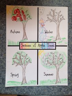 1000 images about apple tree life cycle on pinterest life cycles apple tree and johnny appleseed. Black Bedroom Furniture Sets. Home Design Ideas