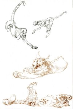 Aside from being one of the best illustrators in the world, period. Claire Wendling is, in my opinion, the best at drawing cats. Loose, stylish, dynamic. Her line work is amazing.