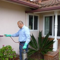 This pest control company offers their premier pest management solutions to a number of homes in Garden Grove. They provide indoor and outdoor insect control, rat extermination services, and many more.