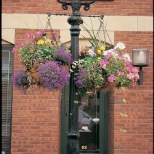 """Reproduction Victorian street lamps with 14"""" street lamps with 14"""" hanging baskets in Doylestown, PA."""