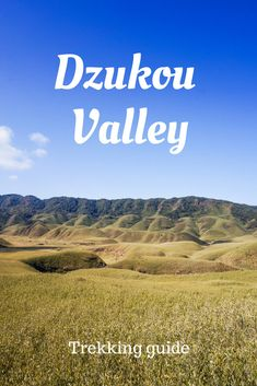 Dzukou valley trek by yourself: accommodation, route, costs and other organizational details to help you plan this trek in North-East of India.