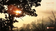 Sunrise Of August - A Ray Of Hope!