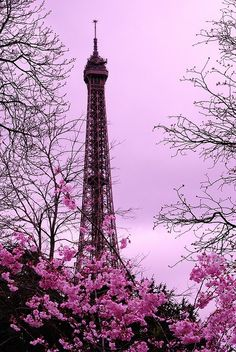 Proof that no Place is Better than Paris in the Spring