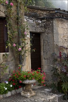 Rustic garden house with roses. #garden
