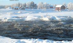 Kukkolankosken pakkashöyryt - kukkolankoski Tornionjoki joki koski virta vesi jää sula talvi kuohuu kuohua höyry vesihöyry lumi asunto talo...