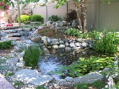 I'd love to add a water feature to our backyard...