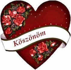 Christmas Stockings, Christmas Ornaments, Love Is Everything, Shrek, Beautiful Roses, Holiday Decor, Birthday, Blog, Google