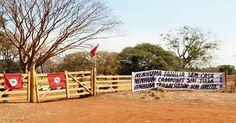 Governador tucano se alia a latifundiária Golpista