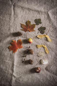Baked Pears, Rose Bath, Conkers, Rose Essential Oil, Bay Leaves, Himalayan Pink Salt, Warm Food, In Season Produce, Seasonal Food