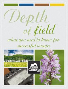 Depth of field: what you need to know for successful images