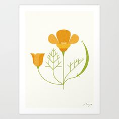 California Poppy Art Print by Ryo Takemasa - $27.04