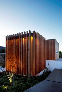 timber fins