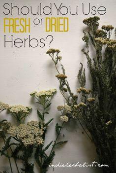 3 Reasons to Use Dried Herbs vs Fresh
