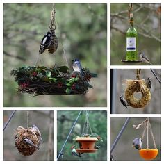 Click on the images below for the complete DIY instructions...   DIY Birdseed Wreaths           DIY Winter Wreath Bird-Feeder           D...