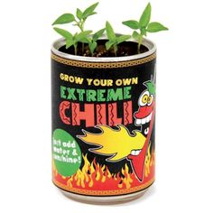 Grow You Own Extreme Chilli R95 Terry/Pappa T