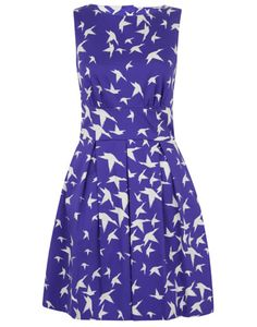 Closet Fanciful Flight Dress