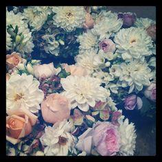 wedding deliciousness - garden roses, dahlias, hydrangea and freesias - March 2012