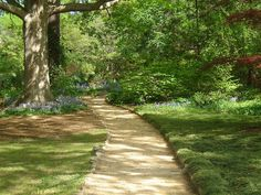 Discovering the Southern Part of Heaven: UNC-Coker Arboretum