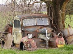 Old Dodge truck. would love to have an old truck to fix up with my husband.