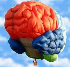 Brain Hot Air Balloon Modern hot air balloons, with an onboard heat source, were pioneered by Ed Yost beginning in the which resulted in his first successful flight on October One Balloon, Big Balloons, Air Balloon Rides, Hot Air Balloon, Brain Shape, Air Ballon, Above The Clouds, At Least, Pictures