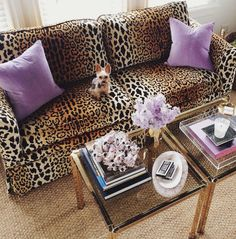 purple + leopard {love a pop of unexpected color and print} HELLO COUCH! Animal Print Decor, Animal Prints, Animal Print Furniture, Animal Print Fashion, Beach Shower, Diy Décoration, My New Room, Cheetah Print, Leopard Print Bedding