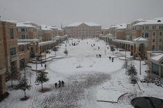 2010 Snow Days