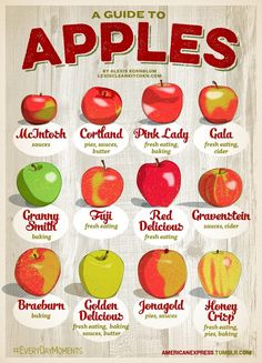 Healthy Food Friday: Guide To Eating And Baking With Apples (Cortland Apple Recipes) Cooking Tips, Cooking Recipes, Healthy Recipes, Food Tips, Apple Recipes, Fall Recipes, Fruit Recipes, Rice Recipes, Thanksgiving Recipes